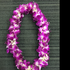 A double Dendrobium orchid Lei in variegated purple and white- a traditional graduation gift.  The price will vary depending on the time of the year...and depends on the volume of leis ordered.  We get better pricing when we order in quantity.