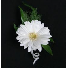 The Gerbera Daisy Boutonnière - these come in a wide variety of colors... please stop by our store and choose your color!