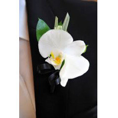 The Phalaenopsis Orchid Boutonnière, match the wristlet of the same flower.