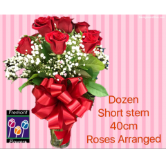Fremont Flowers short stem roses arranged.  One dozen arranged in a glass vase.  Accents include a variety of greens and filler, babies breath or other.  Trimmed with a large matching bow. These roses are 40 cm long as compared to our long stem at 60-70 cm.