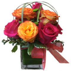 The Rose Parade bouquet combines seasonal rose varieties artfully designed in a clear glass cube.  Perfect for a desk and just about any occasion, the Rose Parade comes in a variety of colors.  Roses come in some of the most varied color combinations throughout the year.  Ask a sales associate for other combinations.