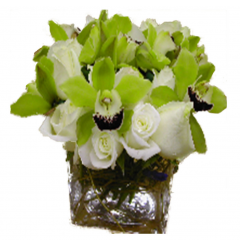 Exclusively available at Fremont Flowers and Marlowes, our sophisticated Orchid Cube features cybidium orchids and roses.