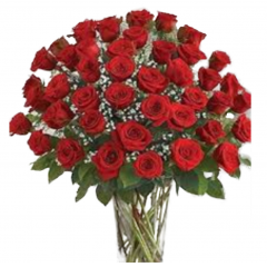 Make a huge statement....3 dozen long stem red roses arranged in a spectacular statement!  This beautiful display is very large...so make sure it does not have to be transported once delivered!   <BR> (Prices listed are for local delivery only. Out of area delivery prices are subject to change.)