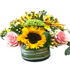 How about a walk in the park?  The Fremont Flowers Walk in the Park is filled with fresh florals that include sunflower, hydrangea, roses fresh greens!  Designed in a clear glass cylinder vase tied with a floral ribbon to match.