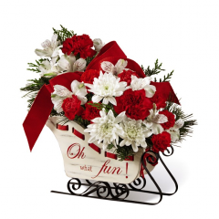 "<b> Ride into the season with a joyful burst of holiday blooms! A modern, fresh take on the traditional sleigh arrangement, we bring together red roses, red carnations, and red mini carnations, offset by snowy white Peruvian lilies and chrysanthemums, accented with an assortment of Christmas greens. Presented in a white holiday sleigh, that reads, ""Oh, what fun!"" on the side in a scrolling red font, this holiday flower arrangement is set to send your warmest yuletide wishes to friends and family no matter the distance.  <br> <br> Sleigh is approx 9½""W x 3 ¾""D x 6 ¼""H"
