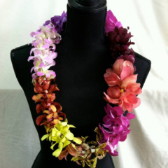 mixed dendrobian orchid leis.  All lei orders require advanced ordering.  Varieties subject to availability.  Call for pricing.