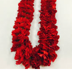 Carnation leis.  You choose the color and combination.  Shown is mixed color to show the variety of colors available.  We match school colors.  Available in red, yellow, white, pink, green, purple.