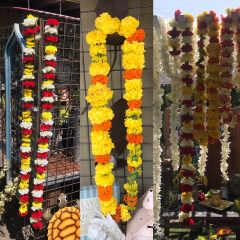 We make fresh garlands for a variety of celebrations.  We use carnations, marigolds and other hearty flowers in a variety of lengths.  Shown are approx 60 inches long.  Colors can vary.  Call for additional details.