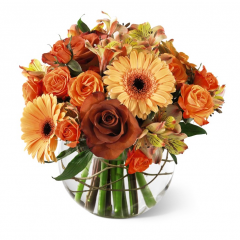 Fall is all about coming together and making memories with one another. The Pilgram Pride Bubble bowl centerpiece helps make those precious moments even more special. With roses, peach tones, carnations and gerbera daisys along with bronze cushion poms, this centerpiece is a beautiful gift for every Autumn occasion.