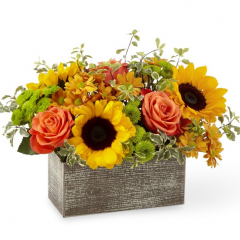 Gathered straight from the garden, sometimes it's beautiful to get to the point. A generous assortment of vibrant orange roses and sunflowers does just that in a weathered, wooden rectangular box. Tell them how you feel with love that's freshly picked.