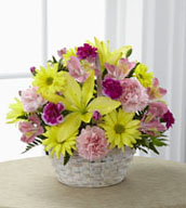 The Basket of Cheer® Bouquet sends your warmest wishes for happiness with each sunlit bloom! Yellow Asiatic lilies and traditional daisies are vibrant and beautiful arranged amongst pink carnations, pink Peruvian lilies and magenta mini carnations. Accented with lush greens and presented in a round whitewash handled basket, this arrangement is a sweet sentiment brought together to brighten your special recipient's day.