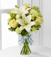 The Boy-Oh-Boy™ Bouquet employs roses and Asiatic lilies to send your bright and sunny congratulations on the birth of their new baby boy! Yellow roses and carnations are brought together with pale green mini carnations, white Asiatic lilies, yellow solidago and lush greens exquisitely arranged in a clear glass gathered square vase. Accented with blue and lavender wired ribbon, this bouquet creates a wonderful way to send your warmest wishes for the adventure of parenthood ahead.