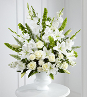 The Morning Stars™ Arrangement is a brilliant expression of peace and soft serenity. White roses, carnations, gladiolus, stock, and Oriental lilies are accented with the bright green stems of Bells of Ireland and a gorgeous assortment of lush greens, while seated in a white designer urn.  This arrangement can be designed in a variety of colors...please specify the colors desired in special instructions