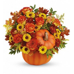 Warm Fall Wishes - Premium