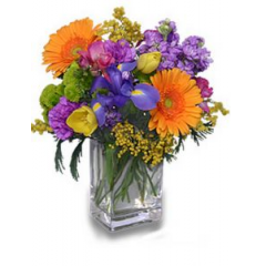 Pick a day, any day, to tell someone how special they are to you. Send them this brightly colored cube of spring flowers.