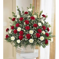 "A LARGE BEAUTIFUL BOUQUET OF RED AND WHITE CARNATIONS CONVEY YOUR HEARTFELT SYMPATHY. ARRANGEMENT IS APPROXIMATELY 36"" TALL BY 36"" WIDE."