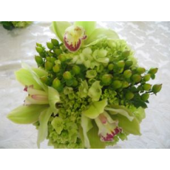 A Glorious Collection Of Elegant Orchids, Hydrangea And Hypericum Berry In Cool Shades Of Lime And Green.