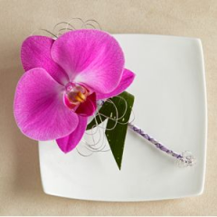 An Elegant Way To Bring A Soft Touch To This Phalaenopsis Orchid Boutonniere. Designer Touches Elegant Look.