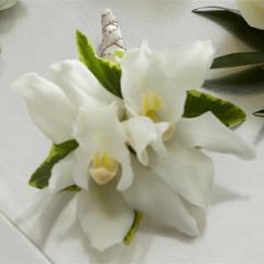 Orchids Bring An Exotic Elegance And Stylish Appeal To The Overall Look Of The Wedding Party. Cymbidium Orchids Accented With Ivy Is The Perfect Modern Look.