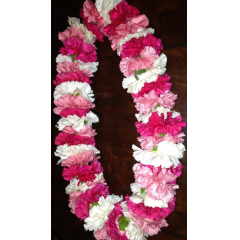 HAVE A GRADUATE GRADUATING?  GET THEM A CARNATION LEI  IN THEIR SCHOOL COLORS & BE THE TALK OF THEIR SPECIAL ACCOMPLISHMENT **Colors may vary**