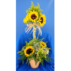 Make a Statement with our Brilliant Sunflower Topiary!  Nested in a clay pot with raffia accents, this arrangement is perfect for any occasion. (Container may vary)