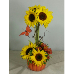 Get them while they are HOT...Sunflowers arranged in a topiary design in our very own ceramic pumpkin adorned with a monarch butterfly!