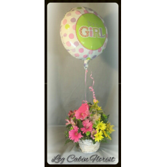 This Cheery Arrangement Is Gathered In A Willow Basket With Gerbera Daisies, Alstromeria And Daisy Mums. Then Finished With A iT'S A GIRL Mylar BALLOON!