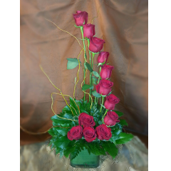 This arrangement of 1 dozen roses is for the person who appreciates the unusual. It is not only beautiful but it makes a statement and creates conversation every time it is delivered!