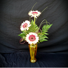 "Gerbera daisies in color vase with wire treatment a simple way to say ""I love you""   ***Color of Gerbs and Vases will vary***"