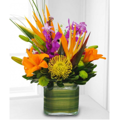 Nice mix of Tropical Bird of Paradise, Pincushion Protea, Dendro Orchids, etc. Nice for a desk or coffee table.