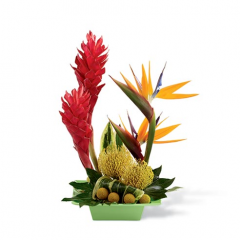 This is a smaller bouquet that is perfect for a desk or bedside table. It is the tropical connection that takes you back to the sandy beaches and beauty only the Islands can provide!