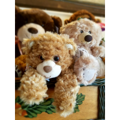 "WE HAVE A CUTE SELECTION OF PLUSH ANIMALS IN SEVERAL SIZES AND PRICE POINTS. CALL US TODAY AND WE CAN HELP YOU FIND THE PERFECT ""FUZZY FELLOW"" TO ADD TO YOUR BOUQUET."