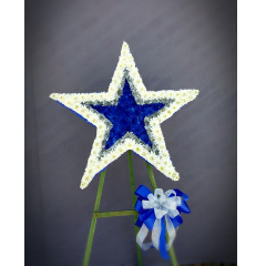 "THE STAR OF THE DALLAS COWBOYS IS THE PERFECT DISPLAY FOR A LIFE LONG FAN! THE DESIGN IS MOUNTED ON A 5FT. EASEL THE STAR IS 24"" IN DIAMETER AND DESIGNED IN BLUE, WHITE AND SILVER."