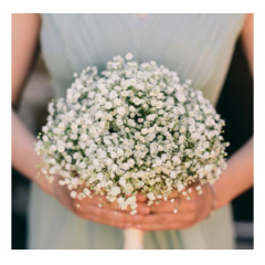 WHIMSICAL GYPSOPHILLIA ! A MILLION LITTLE BLOSSOMS TO CARRY ON A MAGICAL NIGHT. ASK ABOUT ADDING DIAMOND DUST!
