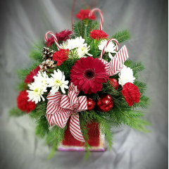 This seasonal arrangement comes in a vintage look red wooden pull drawer complete with glass knob. A fun container that can hold Christmas cards when it is saved for the following Christmas!