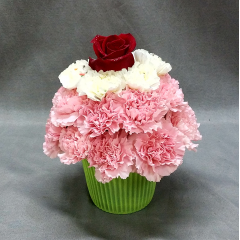 "Celebrate with this fun festive fresh floral birthday bouquet. A collection of almost 2 doz carnations designed to look like a giant cupcake. This arrangement is approximately 9"" tall. A great size for a desk or just to say surprise, I didn't forget!"