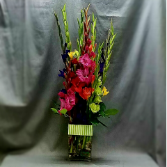 "A striking collection of mixed hybrid glads standing approximately 3 feet tall. This photograph does not do justice to the design and has been well received by all that have received it. Here is a quote from a customer who ordered this arrangement, ""OMG! She absolutely LOVED them. I saw a picture of them. Wow! You did a fantastic job, thank you so much ..."""