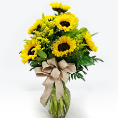 Surprise Someone Special with a Blast of Brilliant Sunflowers!   Filled with Sunflowers and Solidago, this gorgeous arrangement is accented with a County themed raffia bow.  (Container may very)