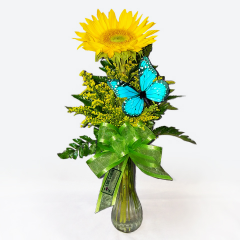 Brighten your Special Someone's Day with a Ray of Sunshine!  Bright and Cheery, this lovely arrangement includes a Fresh Sunflower, Solidagio and a charming Butterfly accent.