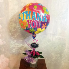 Cute is the only way to describe this blooming African Violet plant in a metal container with chalk board sign. All topped off with a bright colorful, long lasting Thank You Mylar Balloon.