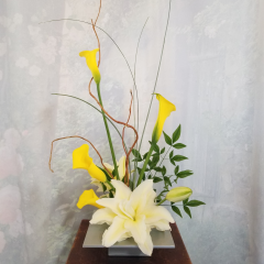 Ikebana Style arrangement for someone that would like something a little different, elegant and stylized for a home or work place.***Flowers may be subject to change due to availability***