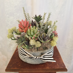Give any space a modern industrial feel with this artificial succulent in a cement container. Approx 11h x 11w