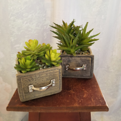 A cute little ceramic drawer artificial succulent for any desk or shelf. Approx 8h x 5w
