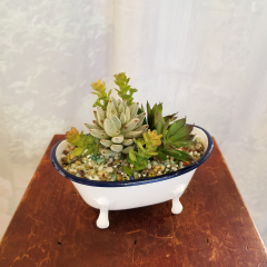A cute little artificial succulent would fit perfect in a bathroom. Approx 7h x 7w