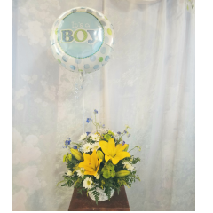 "Sweet basket with bright yellow lilies, blue delphinium, green kermit poms and white daisies topped with a ""It's a boy"" mylar balloon!"
