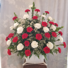 "A large beautiful bouquet of red and white carnations convey your heartfelt sympathy.  Approx 36"" H x 36"" W."