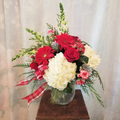 """Fun, festive Christmas arrangement in a clear glass vase with hydrangea, mini carns, roses, gerbs, snaps and silver pine cones with plaid accent ribbon. Approx. 23""""H x 17""""W"""
