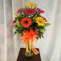 "Mixed Gerbera Daisies of our brightest, boldest colors arranged in a tall vase with filler flower and bow. Approx. 25""H x 15""W **Container and colors of flowers may vary depending upon availability**"