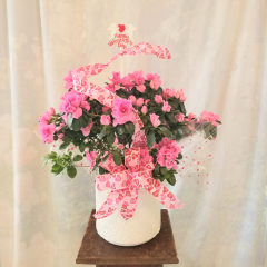 """8"""" in Azalea in a ceramic container with valentine's ribbon and pick. Approx. 20""""H x 21""""W **Colors of plants & ribbon may vary**"""