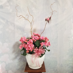 "Our beautiful Begonia in a ceramic with curly willow and bird. **Colors of plants and container may vary** Approx. 19"" tall (not including curly willow)"